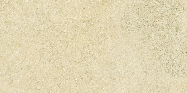 EVOLUZIONE beige 2 (1181×591)