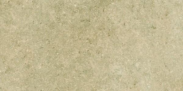 EVOLUZIONE greige 2 (1181×591)